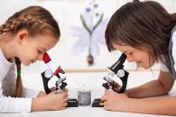 Занимательная миркоскопия детям 6-15