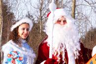 Дед Мороз на дом Измайлово вао