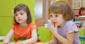 Программа по развитию интеллекта у дошкольников ВАО