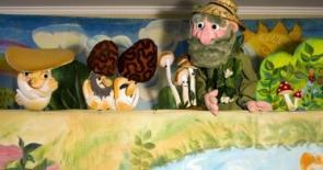 """выездной кукольный спектакль """"Лесной переполох"""" для детей в измайлово"""