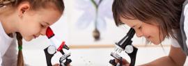 Занимательная микроскопия детям от 6 лет